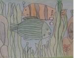 4-peces-colores